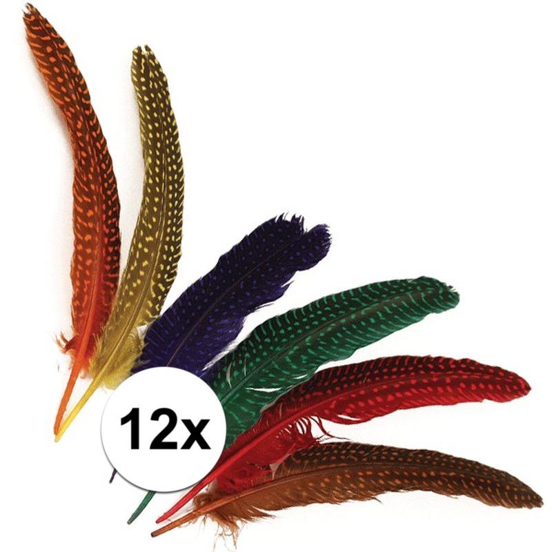 12x Gestipte veren in verschillende kleuren