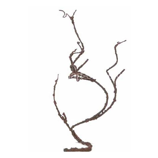 Kleine Kronkeltak 40 tot 75 cm